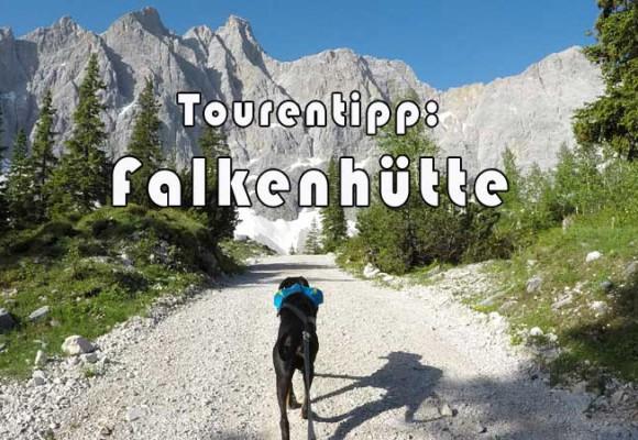Falkenhütte - Wanderung mit Hund
