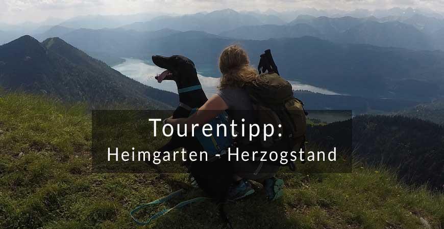 Tourentipp: Heimgarten/Herzogstand