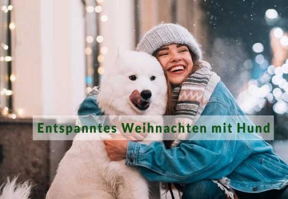 Tipps für ein entspanntes Weihnachten mit Hund