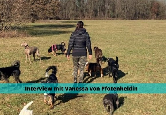 Interview mit Vanessa von Pfotenheldin