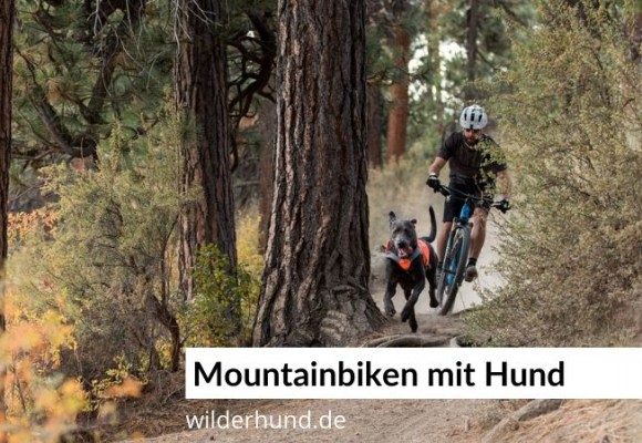 Mountainbiking mit Hund