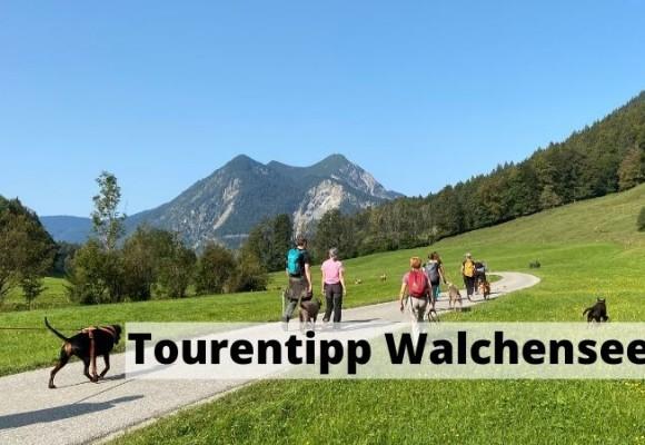 Tourentipp Walchensee